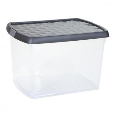 Graphite/Silver Storage Box with Clip-On Lid - 21.5 L